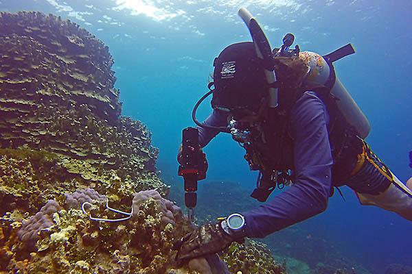 Narzędzia Nemo Power Toolsdla nurków komercyjnych